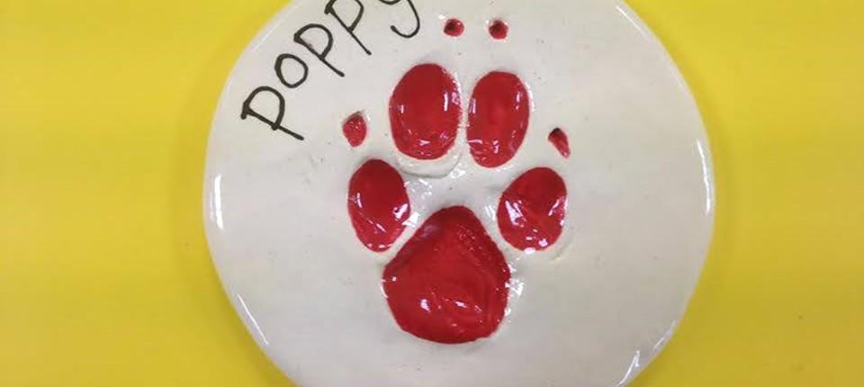 Pet Imprints